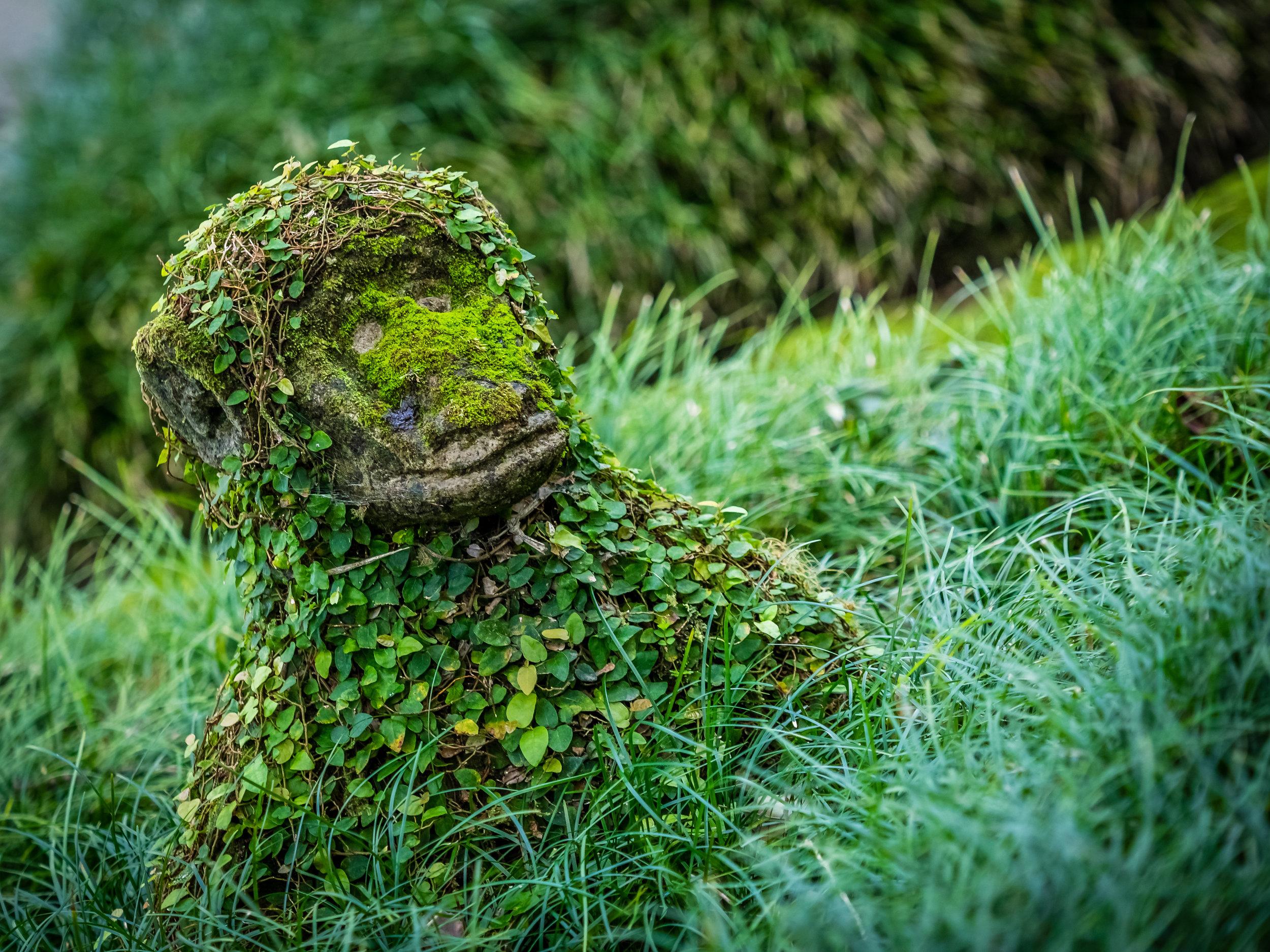 Naturens kunstverk på Azorene