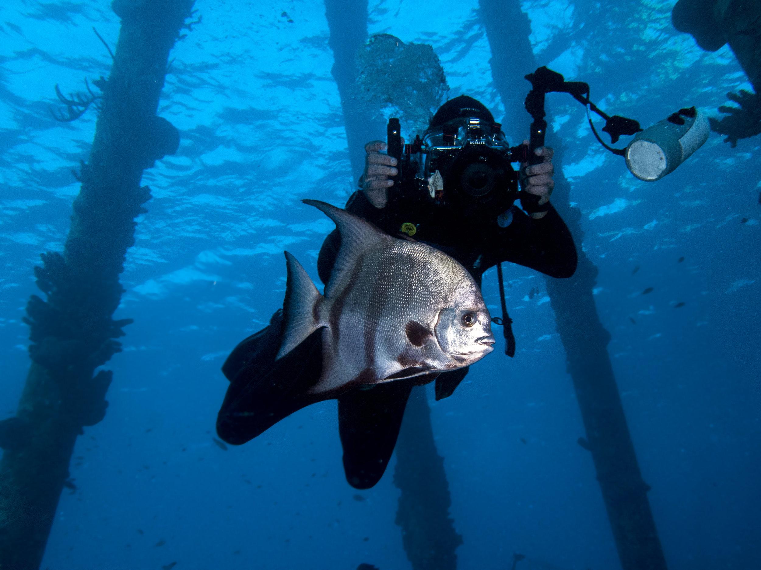 Bonaire er et eldorado for deg med sans for dykking, snorkling, vannsport og deilige strandferier.