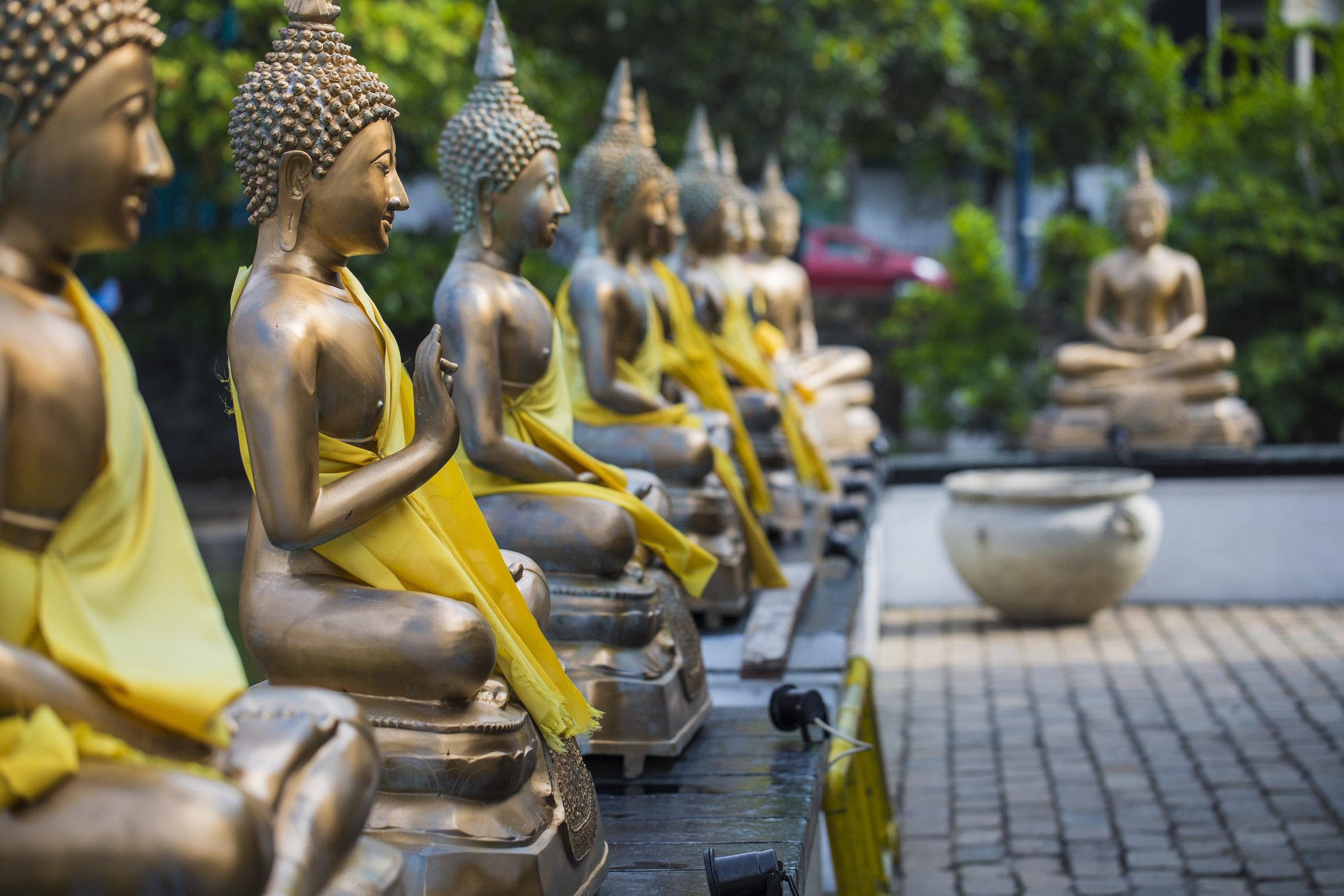 srilanka_bigstock-Buddha-Statues-In-Seema-Malaka-161364722.jpg