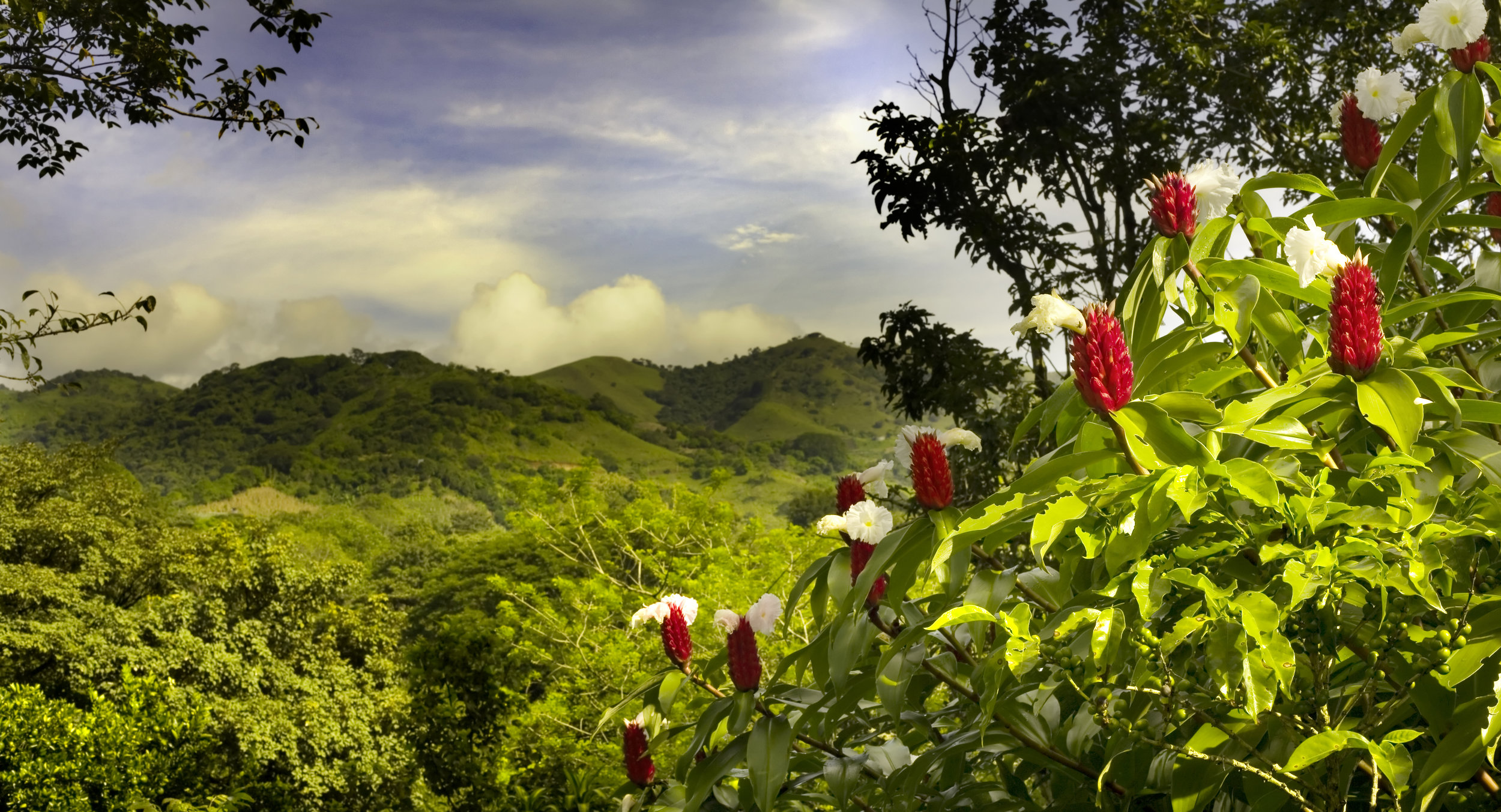 costarica_iStock-144368294.jpg