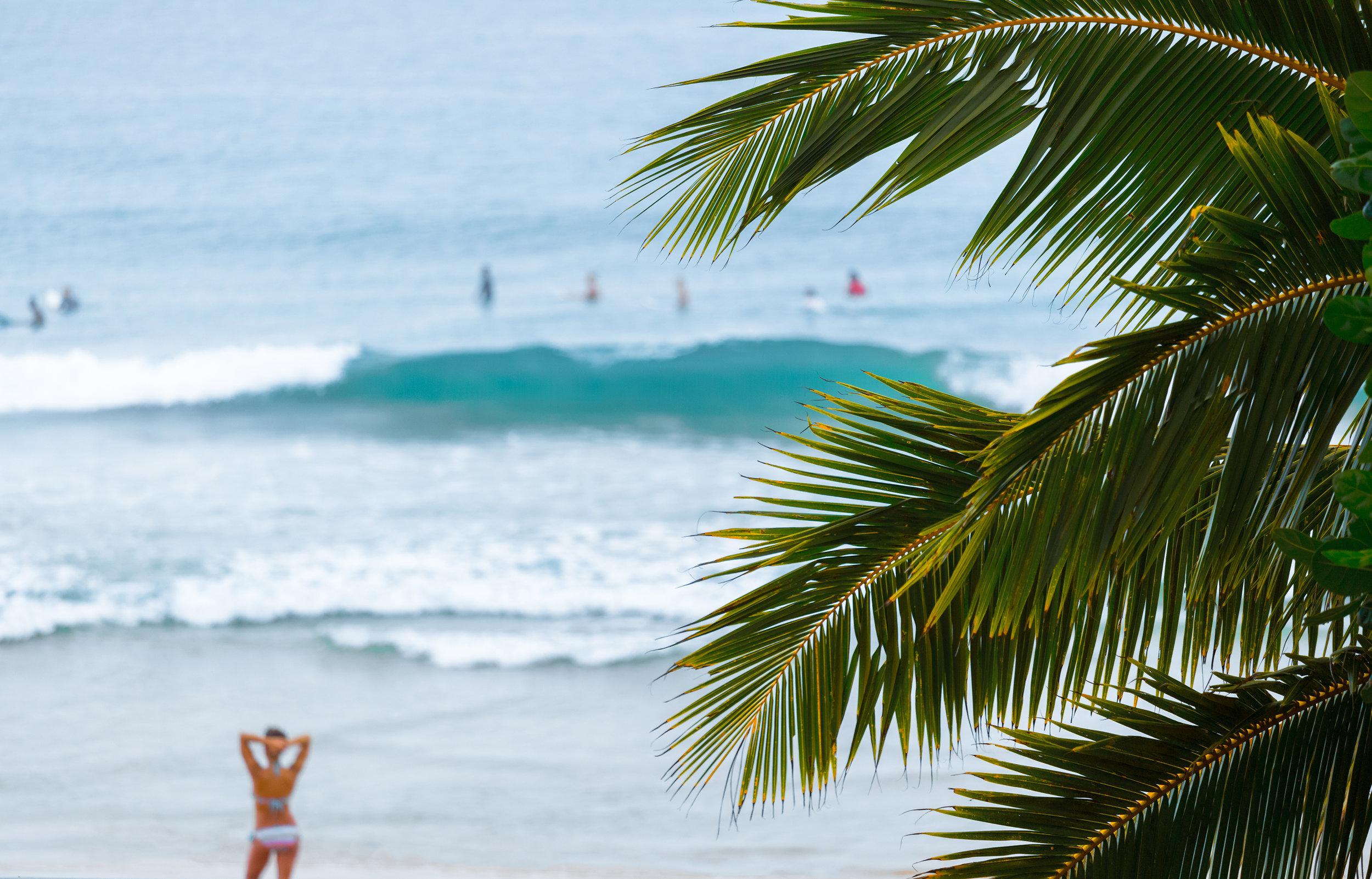 srilanka_hikkaduwa_bigstock-Tropical-beach-with-palm-trees-115241447.jpg