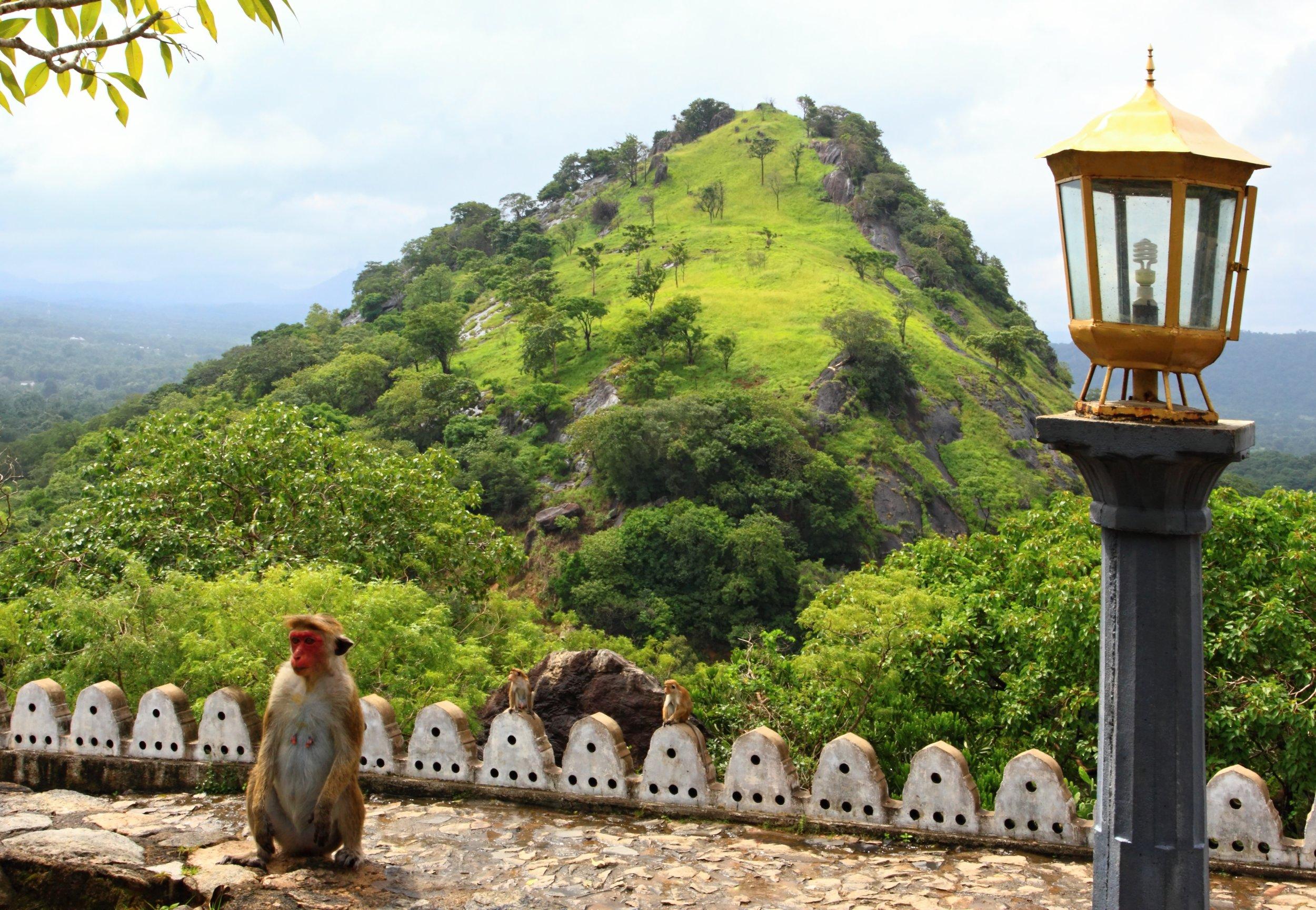 srilanka_bigstock--184971136.jpg