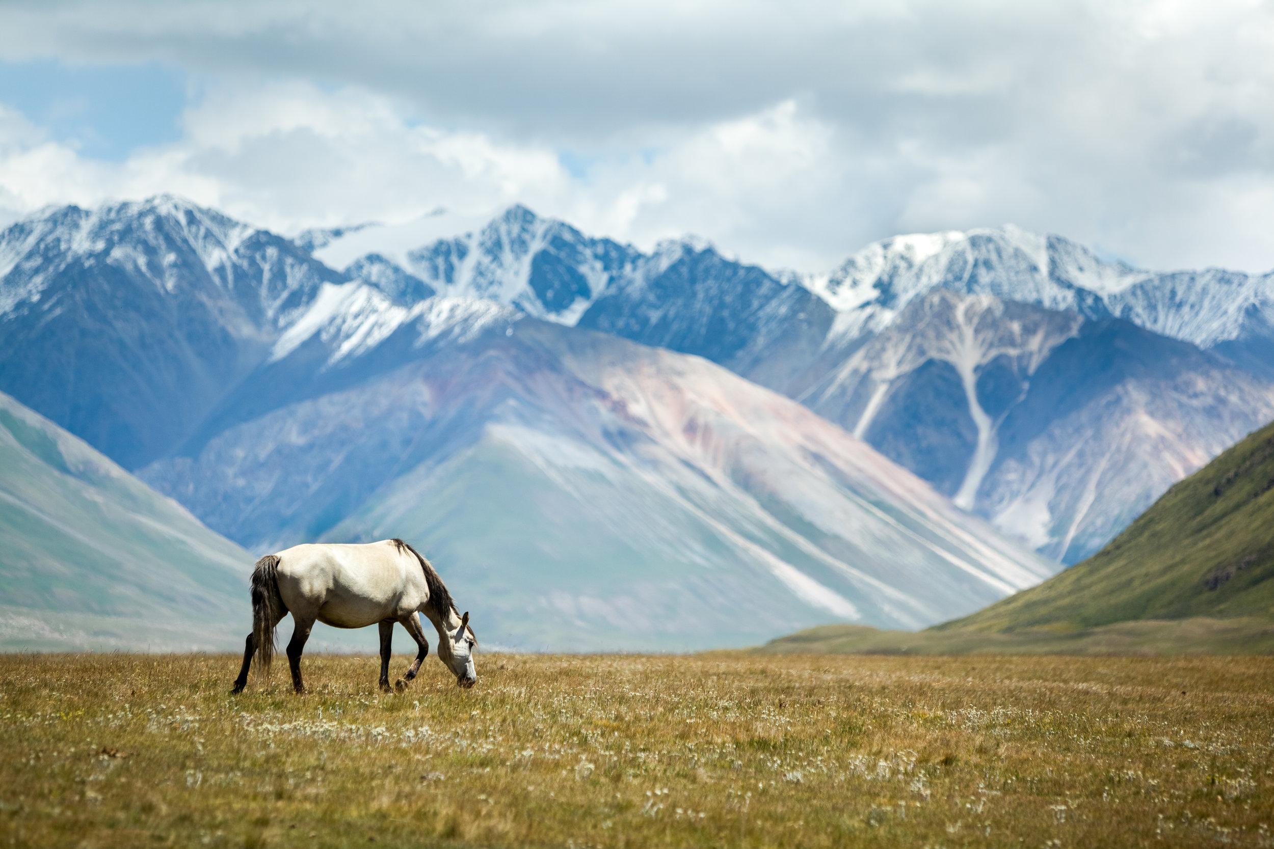 Eventyrlandet Nepal ligger mellom skyhøye Himalayatopper, dyp jungel, vaiende bønneflagg