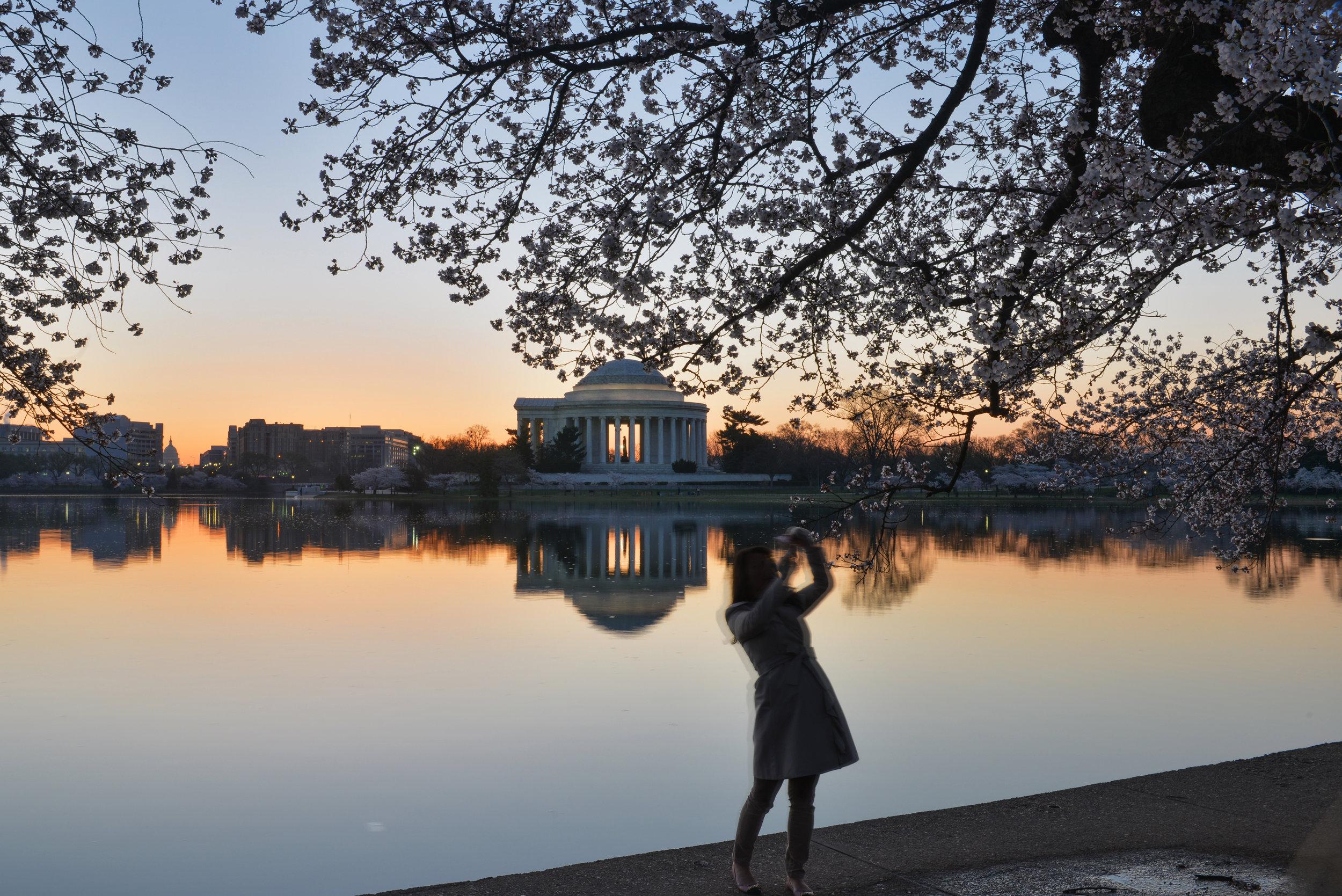 Jeg er veldig glad i Washington DC; vakker, historisk og kulturell