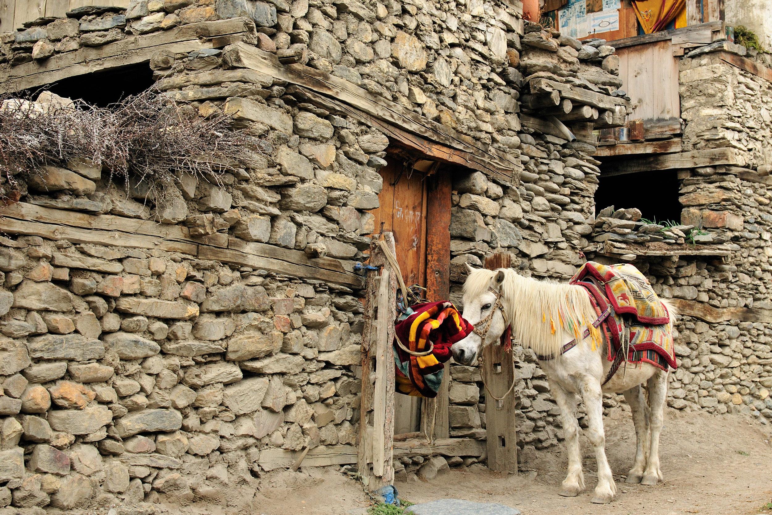 nepal_bigstock-Trek-In-Nepal-Annapurna-Cirku-231901714.jpg