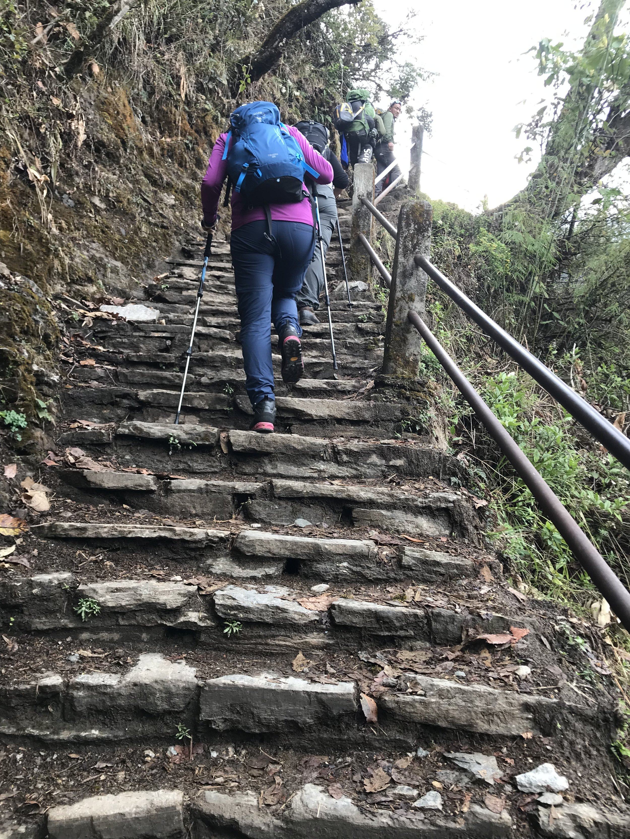 Trapper langs fjellsiden i Nepal