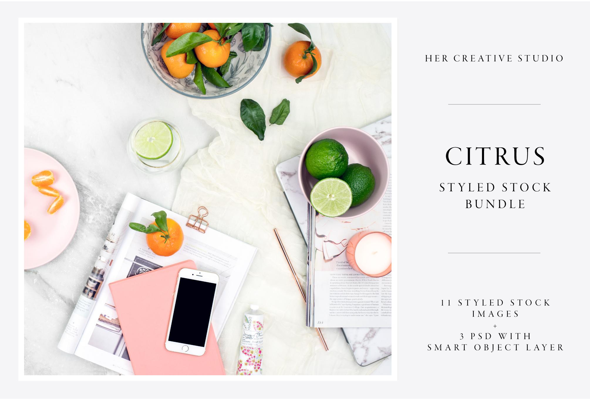 Citrus-Bundle-Template-A.jpg