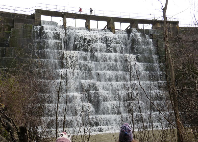 """January 2015:    Stanford considering the fate of century-old dam threatening endangered trout    In 1892, a private company built the dam and created the Searsville Reservoir, hoping to make a new source of water for San Francisco. There was a small problem: the water that pooled up in the Reservoir was undrinkable.  The solution: Searsville Lake! For decades, people flocked there to swim and boat. In the meantime, Stanford acquired the 1,200 acres surrounding the dam to study things like local plant life, animals, and air quality. To protect that research, in 1975, the university made the land off-limits to the public.  Today, Searsville Lake is more of a marsh, almost completely full of sediment that people wouldn't want to swim in. Steelhead trout, on the other hand, would love to swim in it – if they could get there. And that's what Sproul says the environmental groups want to see. First, they want Stanford to stop taking water out of the creek.  """"And we also want them to allow fish passage past Searsville Dam back up to the upper watershed. [There are] various ways they could do that. Taking out the dam would be the best,"""" says Sproul.   Read more here."""