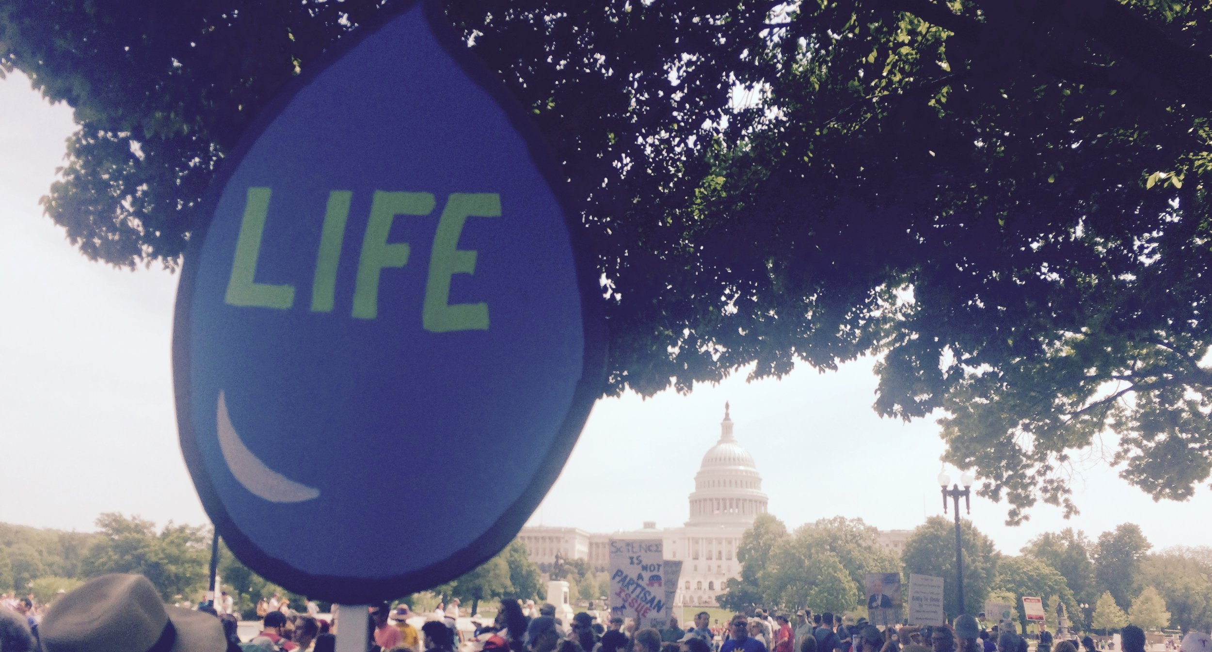 Water Is Life DC Climate March 2017.jpg