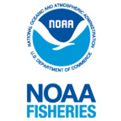 NATIONAL MARINE FISHERIES SERVICE: SAN FRANCISQUITO CREEK STEELHEAD