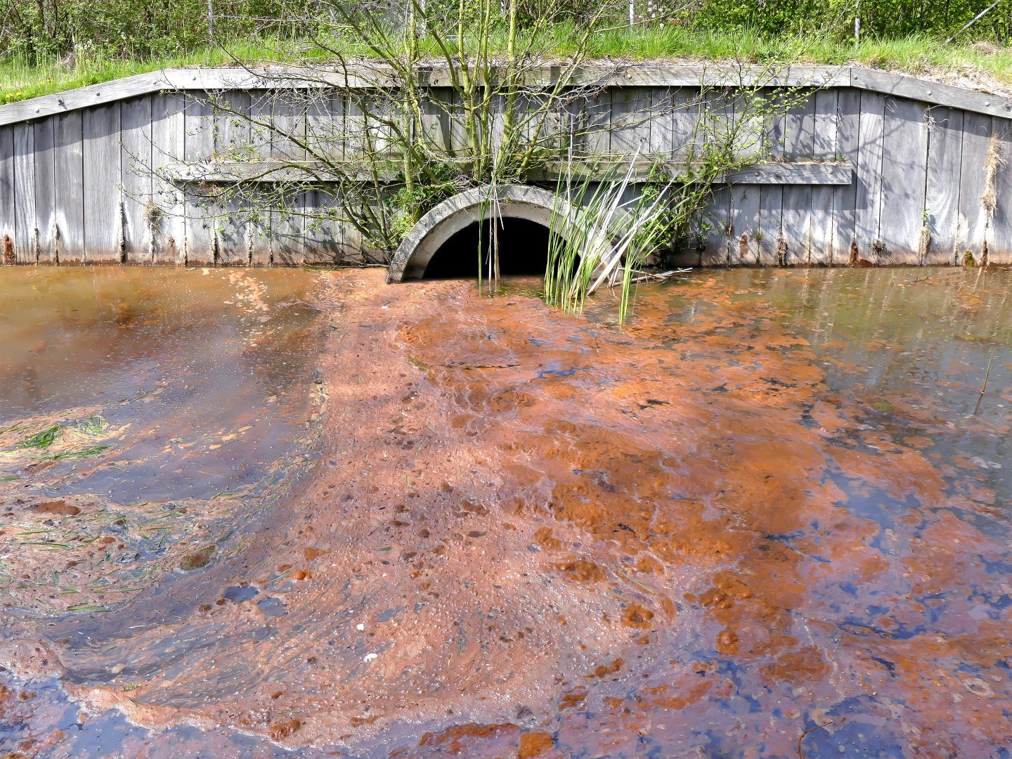 Image from SaintPetersburgBlog.com: http://saintpetersblog.com/environmental-groups-sue-gulfport-sewage-overflows/