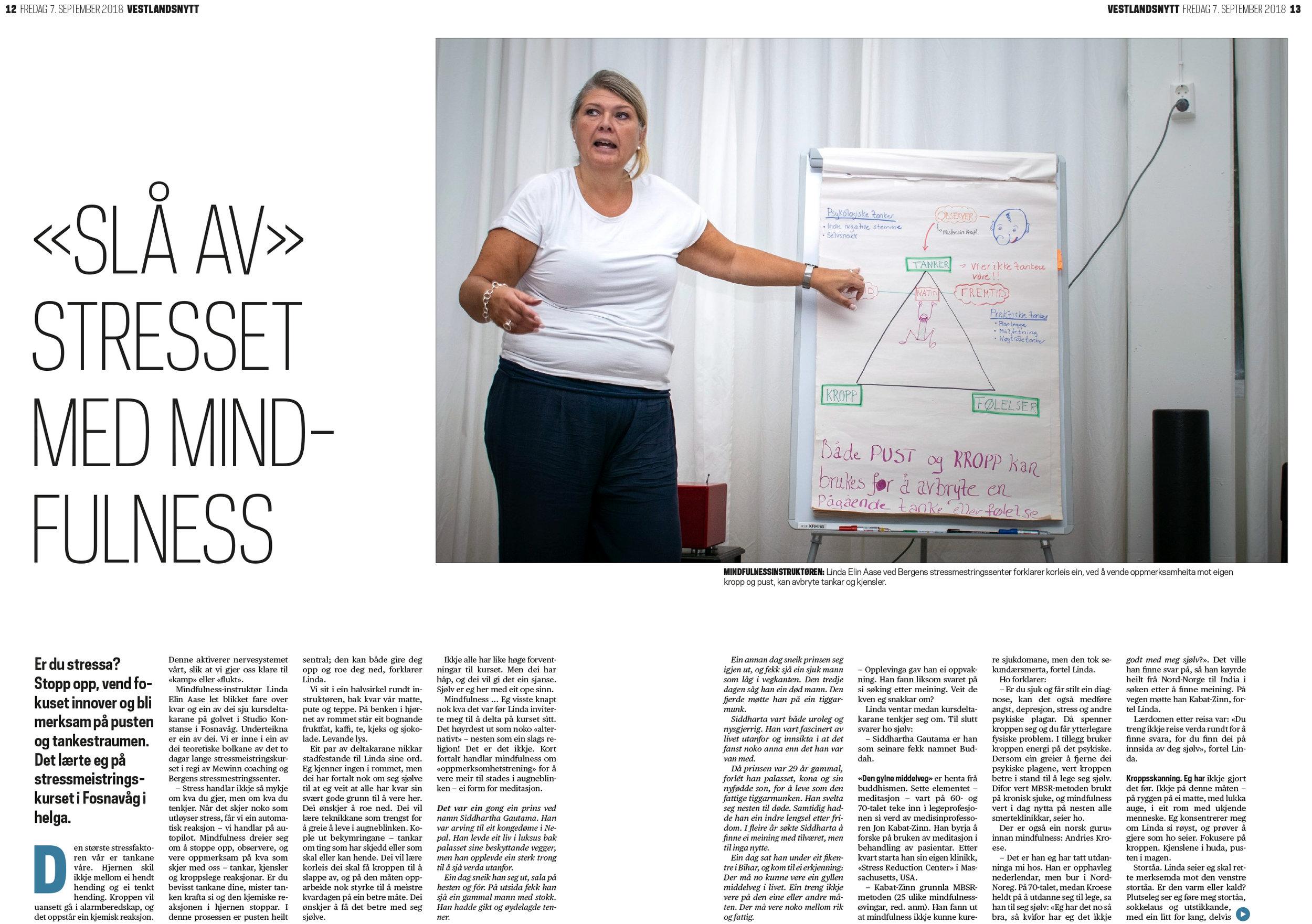 Mindfulness-sak-1.jpg
