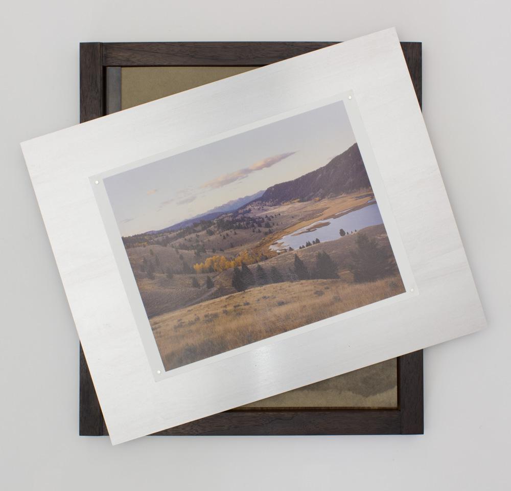 Greys Prints (4 of 48).jpg