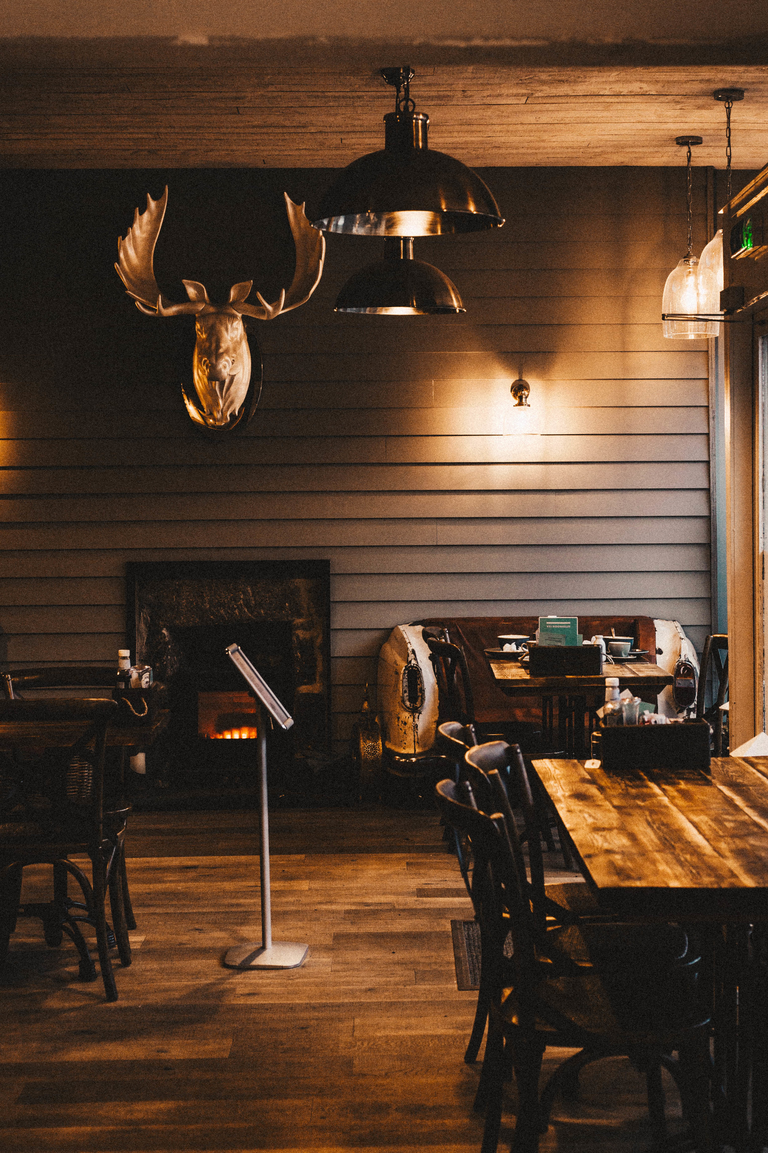 deer in cafe 2.jpg
