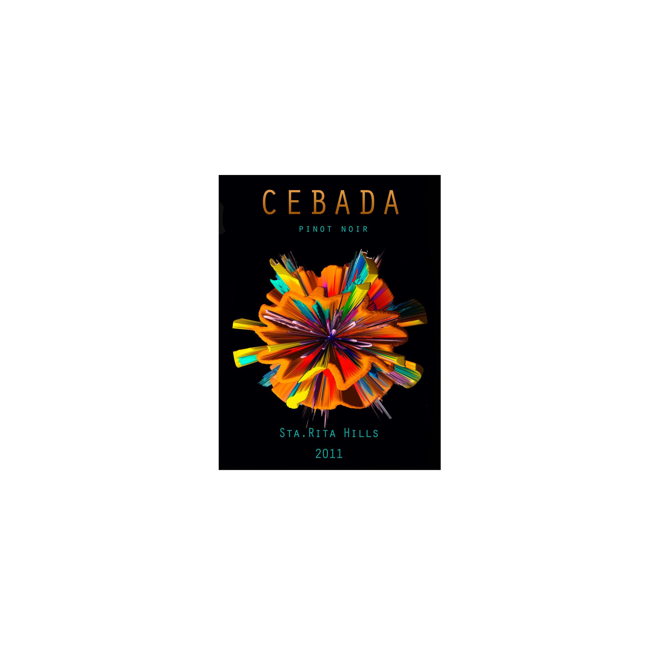 CEBADA-4-site.jpg