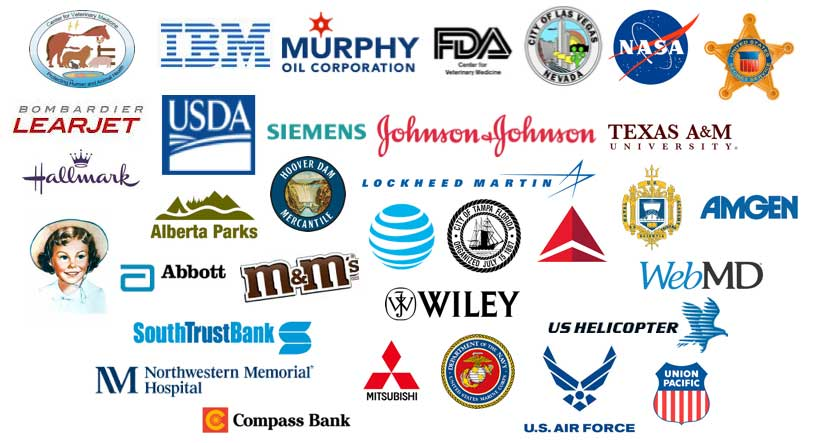 IBM, Murphy Oil Corporation, FDA, City of Las Vegas, NASA, Hallmark, LearJet, USDA, Siemens, Johnson & Johnsoon, Texas A&M, Abbott, Alberta Parks, Wiley, Lockheed Martin, City of Tamp, Delta, and US Naval Academy. Some of the customers who we have trained on Microsoft Project, PWA or Microsoft Project Server