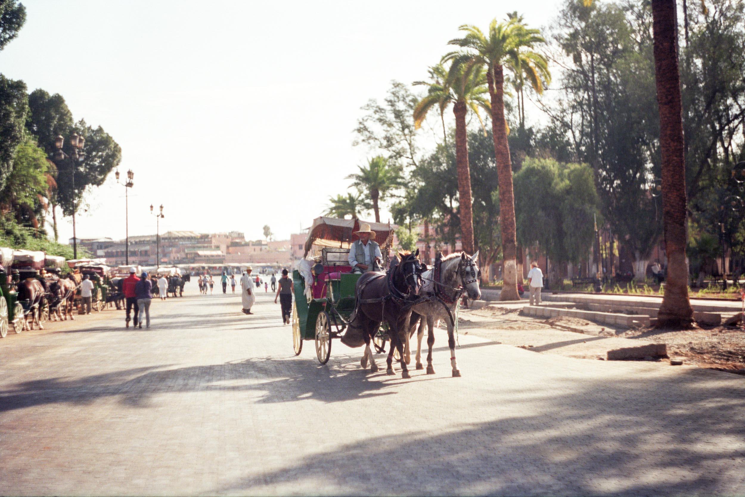 FVF_Morocco_Website-2.jpg