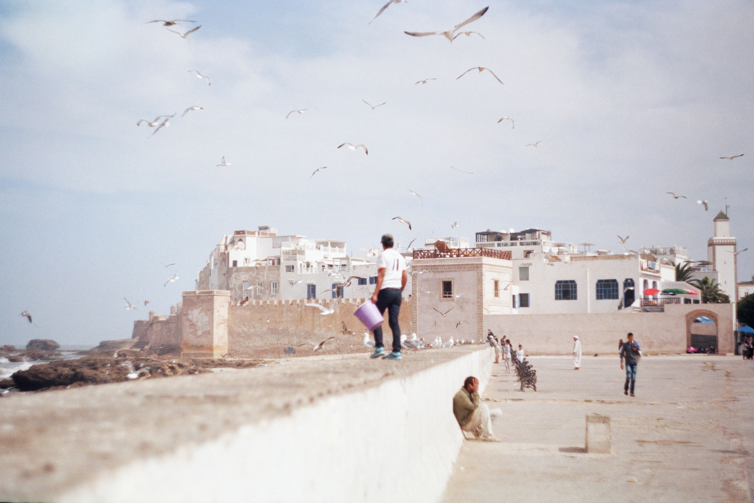 FVF_Morocco_Website-10.jpg