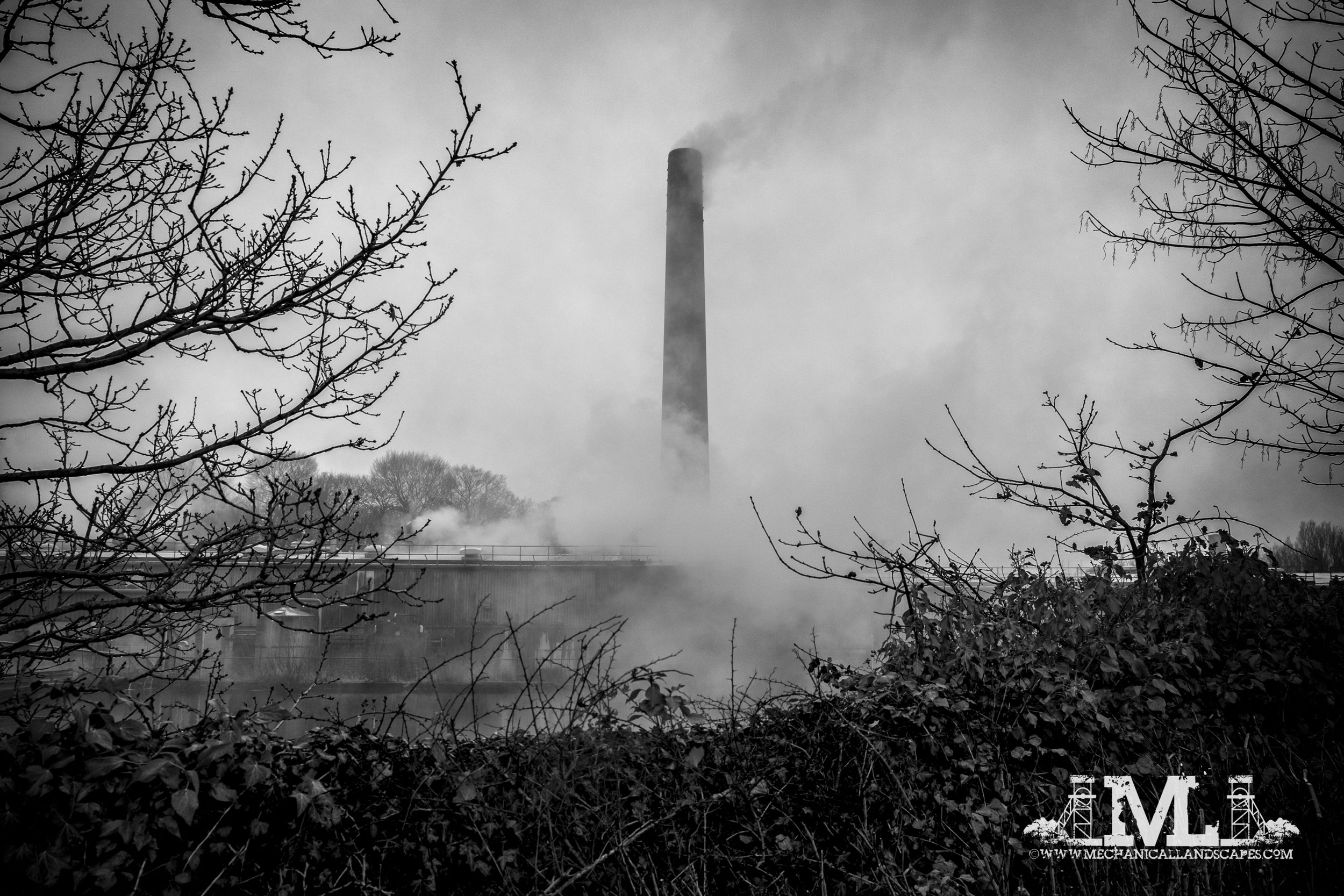 Pincroft Dyers, Adlington