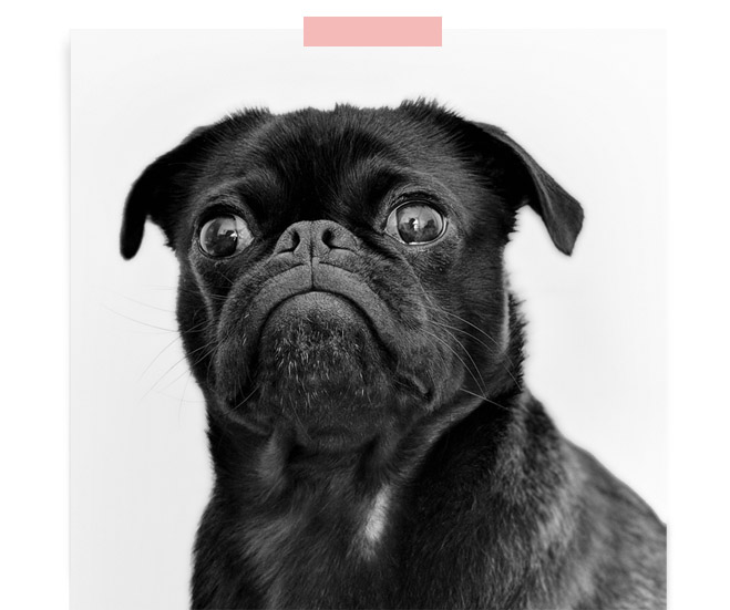 404 Image 7.jpg