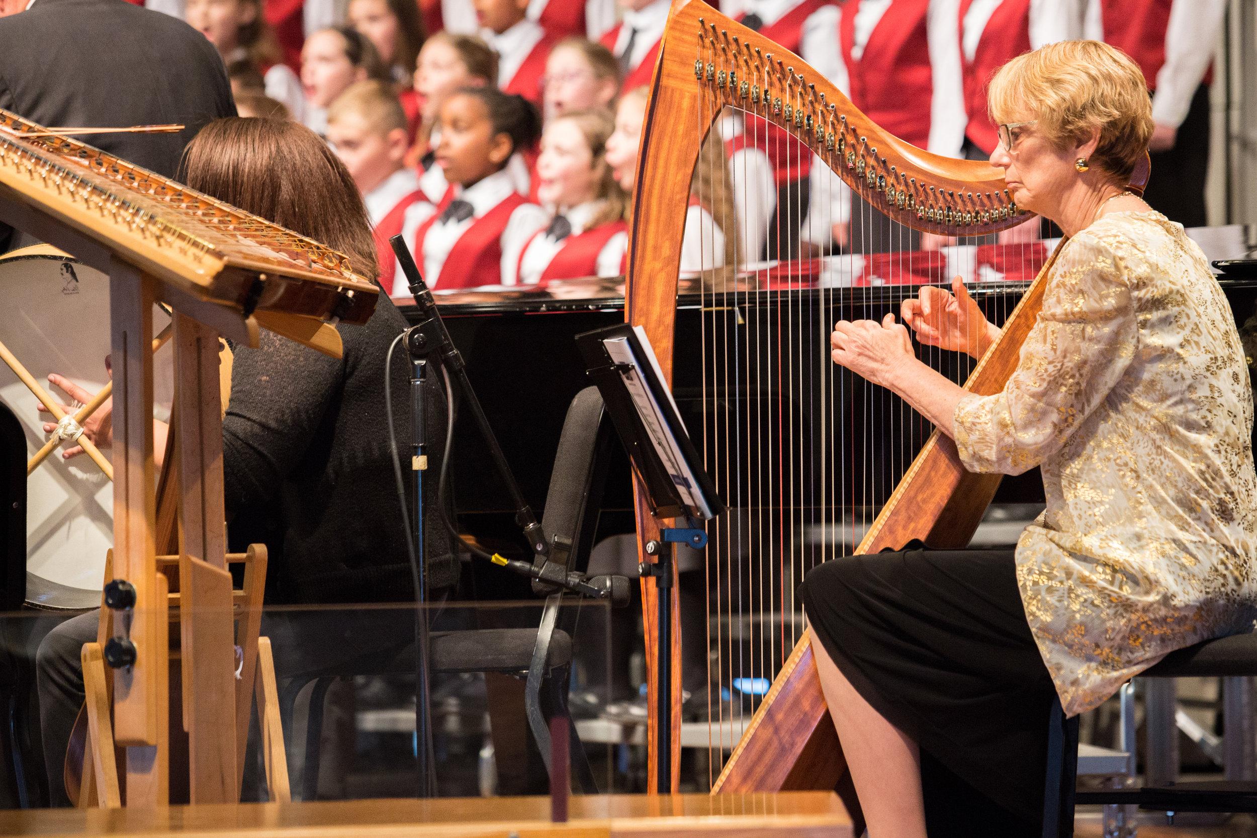 20160410-SVCC Concert with Ann Robinson-harp-025.jpg