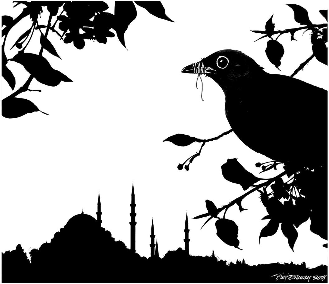 Journalism in Turkey, 2018