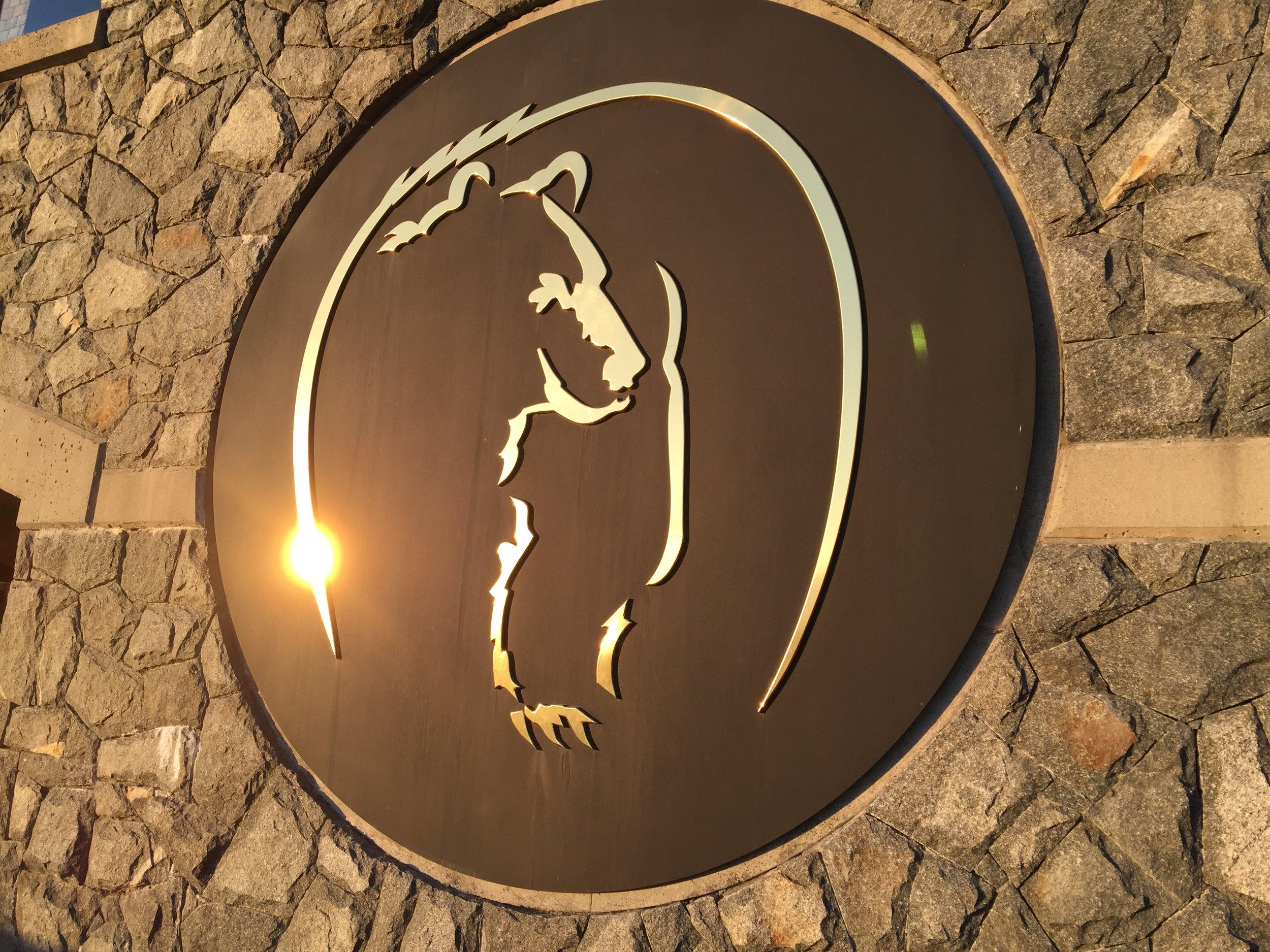 BM Logo copy.jpg