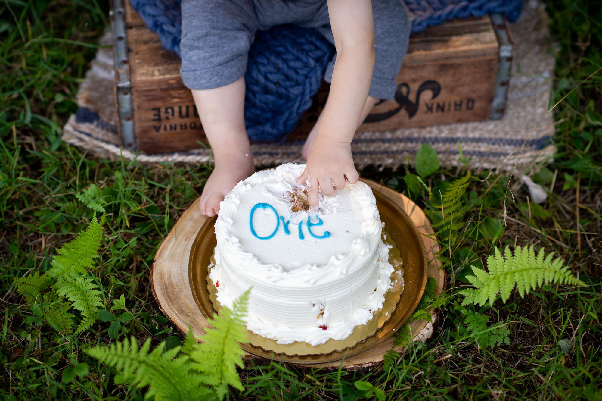 close up of a boy's hand on his cake at his one year cake smash