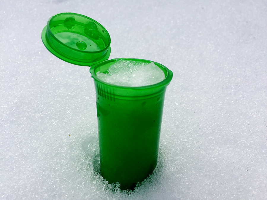 Snow vial protect winter art fundraiser Taylor Smith.jpg
