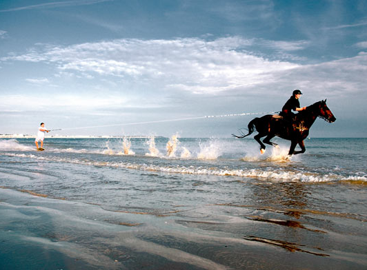Horse Boarding Surf 2.png