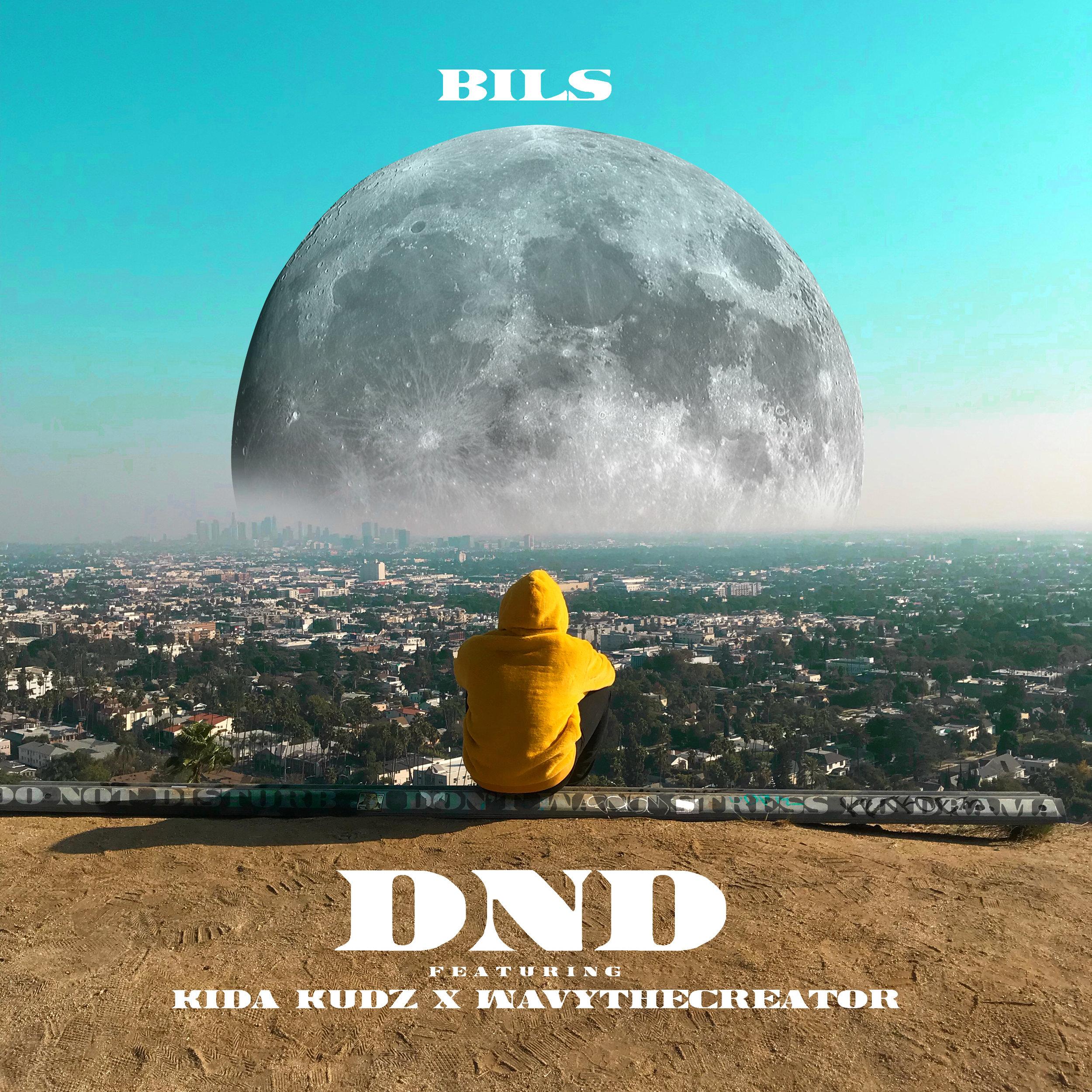 DND COVER ART.jpg