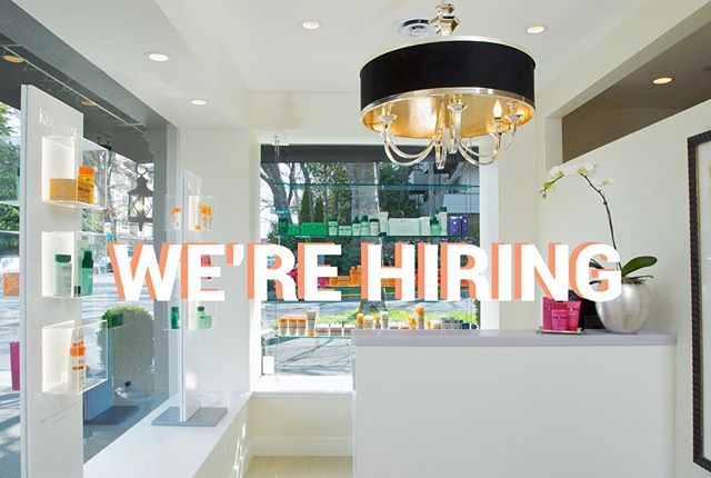 We're looking for a new stylist to join our amazing team. Send resume and cover letter to info@davidlevi.com