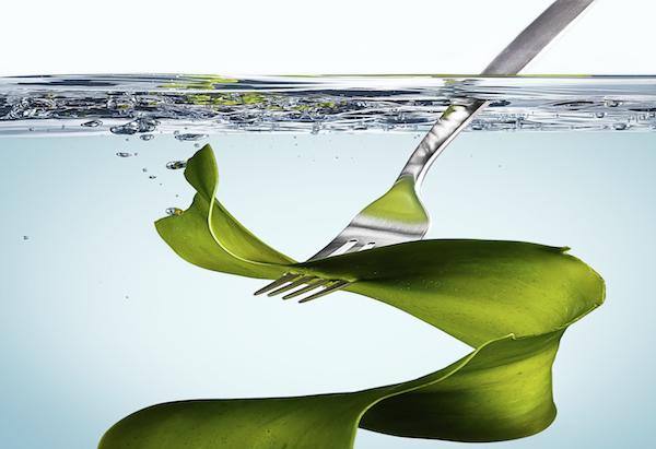 seaweed on fork2.jpeg