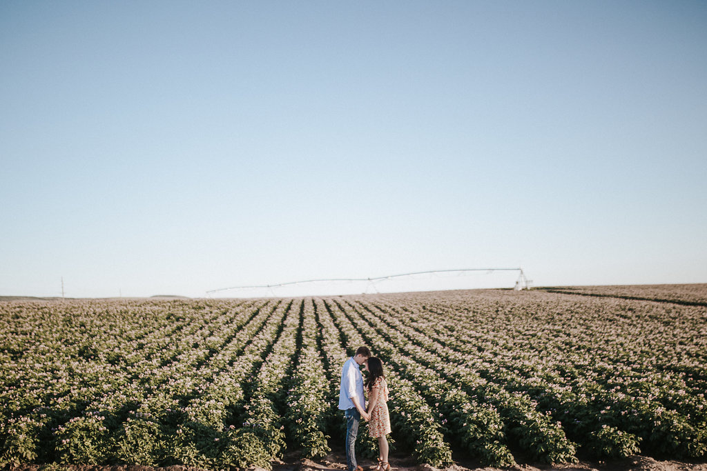 Rexburg-Idaho-Engagement-Photography-Look-For-The-Light-Photo-Video Jackson Hole elopement photographer