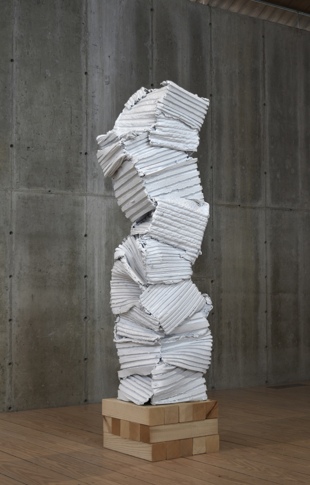 """Surrounding Walls"" 2010"