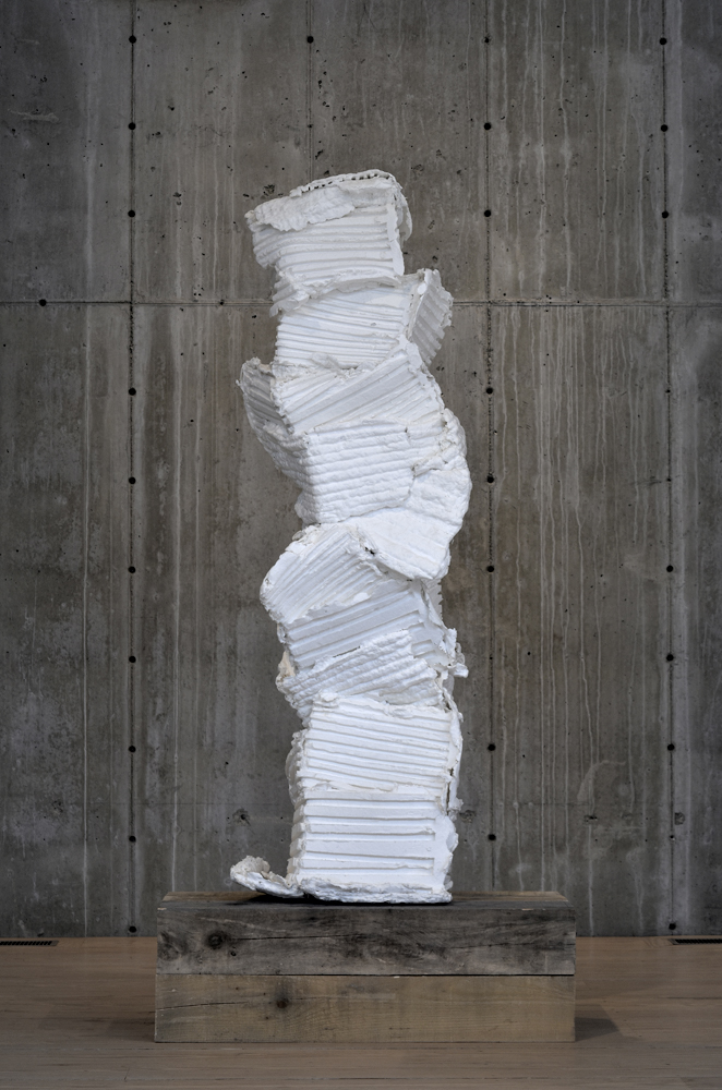 """""""Surrounding Walls III"""" 2010"""
