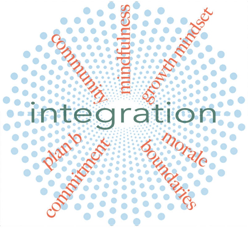 integration sunburst6.jpg