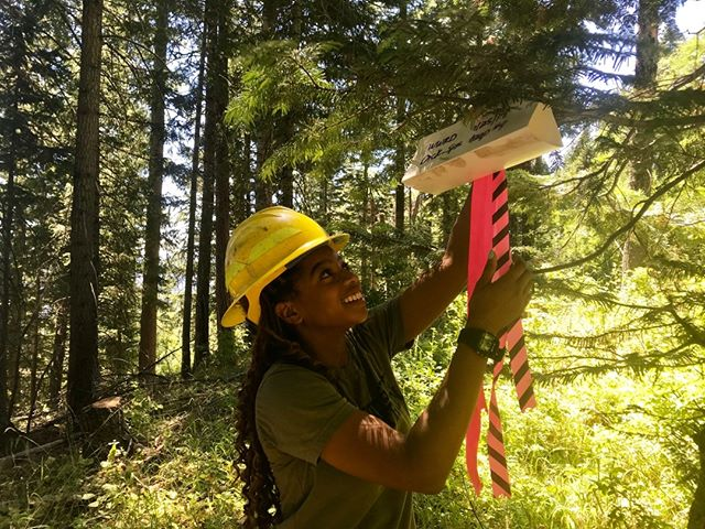 "Jasmine is hanging insect boxes in the woods so that they can identify them later in the lab. She is so excited to learn about forestry in college and apply it later in her career. ⠀⠀⠀⠀⠀⠀⠀⠀⠀ 🌱⠀⠀⠀⠀⠀⠀⠀⠀⠀ Credit goes to @jastyjasmine⠀⠀⠀⠀⠀⠀⠀⠀⠀⠀⠀⠀⠀⠀⠀⠀⠀⠀ 🍂⠀⠀⠀⠀⠀⠀⠀⠀⠀⠀⠀⠀⠀⠀⠀⠀⠀⠀ Check out more in the Full Podcast Episode in our BIO!⠀⠀⠀⠀⠀⠀⠀⠀⠀ 🌲⠀⠀⠀⠀⠀⠀⠀⠀⠀ What is your favorite social media platform and why?⠀⠀⠀⠀⠀⠀⠀⠀⠀ ""I would say it's a toss-up between #LinkedIn and #Instagram only because I'm more familiar with Instagram and I'm just now starting to know what it means to have a resume like a living resume on LinkedIn. I started my LinkedIn profile January of this year and thanks to that profile this has even afforded me this interview that I'm having today I was I would not have been able to connect with you if I had not connected with you on LinkedIn so just thinking about what it means to market yourself on different platforms and also in different ways because a lot of the stuff I'm a sure on Instagram will not be posted on LinkedIn and vice versa."" -Jasmine Brown⠀⠀⠀⠀⠀⠀⠀⠀⠀⠀⠀⠀⠀⠀⠀⠀⠀⠀ .⠀⠀⠀⠀⠀⠀⠀⠀⠀⠀⠀⠀⠀⠀⠀⠀⠀⠀ .⠀⠀⠀⠀⠀⠀⠀⠀⠀⠀⠀⠀⠀⠀⠀⠀⠀⠀ .⠀⠀⠀⠀⠀⠀⠀⠀⠀⠀⠀⠀⠀⠀⠀⠀⠀⠀ .⠀⠀⠀⠀⠀⠀⠀⠀⠀⠀⠀⠀⠀⠀⠀⠀⠀⠀ .⠀⠀⠀⠀⠀⠀⠀⠀⠀⠀⠀⠀⠀⠀⠀⠀⠀⠀ .⠀⠀⠀⠀⠀⠀⠀⠀⠀⠀⠀⠀⠀⠀⠀⠀⠀⠀ .⠀⠀⠀⠀⠀⠀⠀⠀⠀⠀⠀⠀⠀⠀⠀⠀⠀⠀ .⠀⠀⠀⠀⠀⠀⠀⠀⠀⠀⠀⠀⠀⠀⠀⠀⠀⠀ .⠀⠀⠀⠀⠀⠀⠀⠀⠀⠀⠀⠀⠀⠀⠀⠀⠀⠀ .⠀⠀⠀⠀⠀⠀⠀⠀⠀⠀⠀⠀⠀⠀⠀⠀⠀⠀ . ⠀⠀⠀⠀⠀⠀⠀⠀⠀⠀⠀⠀⠀⠀⠀⠀⠀⠀ #forest #trees #forestry #forests #wood #timber #sustainable #peopleofforestry #forestproud #ittakesaforest #rootforruralforests #weloveforests #woodwork #treefarm #arborist #ecology #workingforest #landowner #womeninwood #womeninscience #womeninspiringwomen #forestryofcolor #womenwhorock⠀⠀⠀⠀⠀⠀⠀⠀⠀⠀⠀⠀⠀ @dougfirconsulting @forestproud @dovetailpartners @foresthistorysociety @georgiapacific @nafoalliance @eforester_org @usdagov @u.s.forestservice @worldforestryctr @washdnr @weyerhaeuser @vaagentimbers @conserve_wa @washingtonsaf @portblakely @orforests"