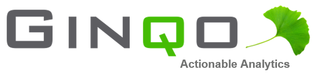 GINQO Logo - Actionable Analytics.png