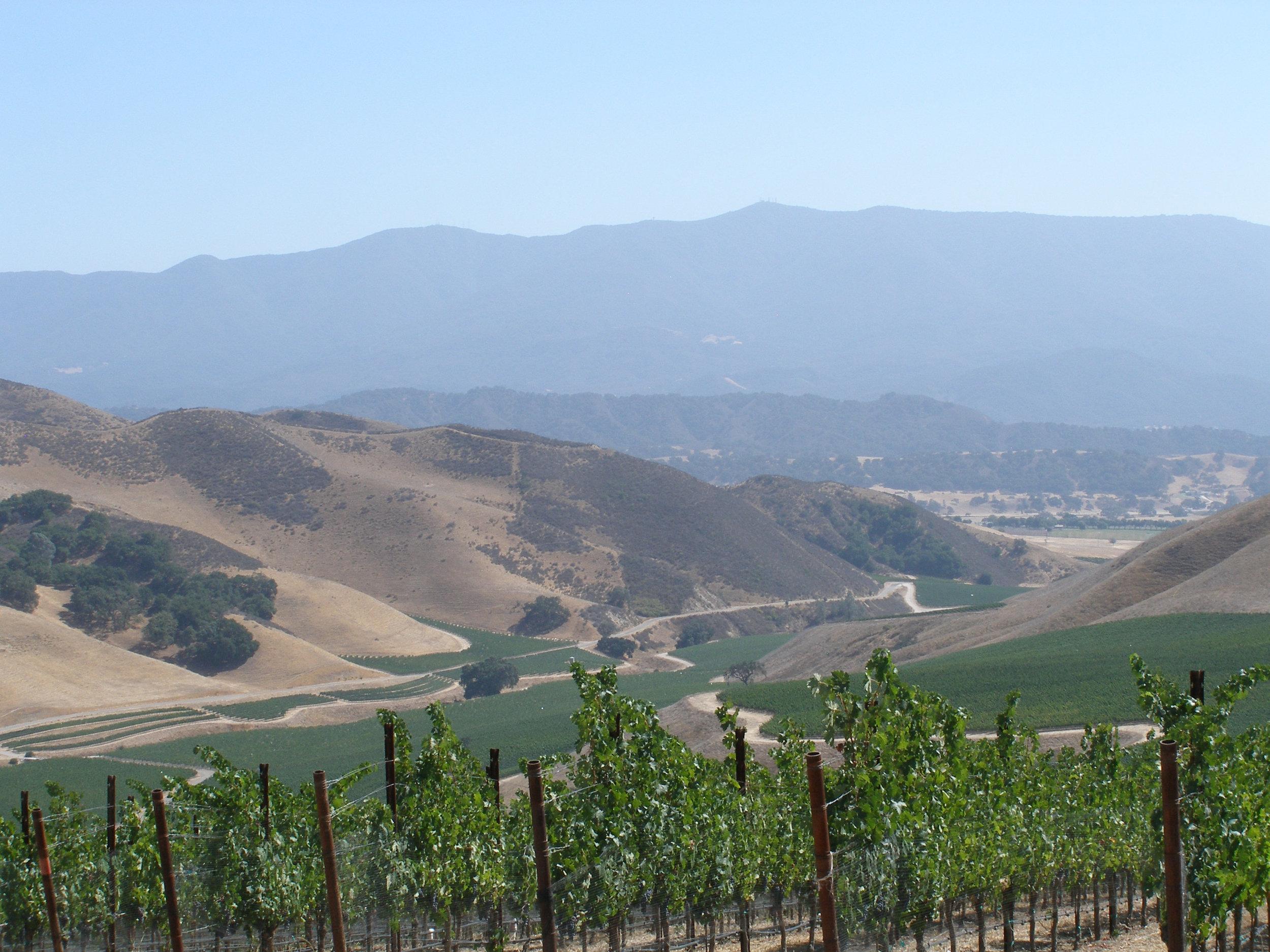 napa winery.jpg