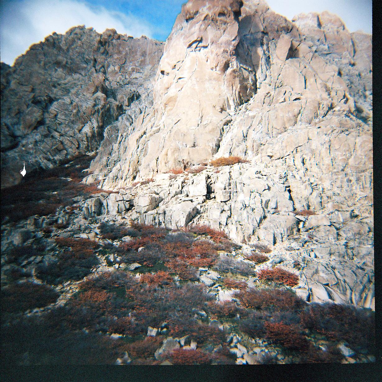 frey-rocks-scrub.jpg