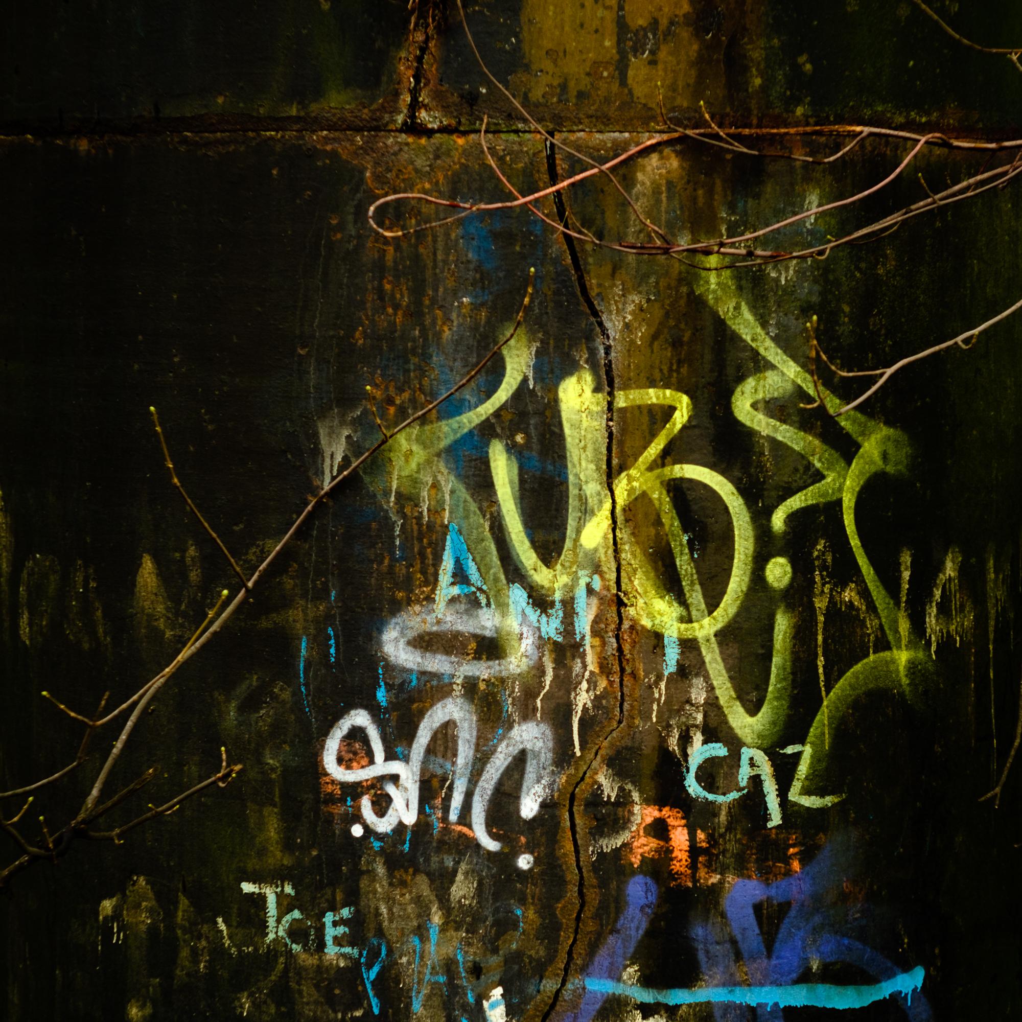Graffiti on the old Dalmarnock railway bridge [XT2 / Velvia]