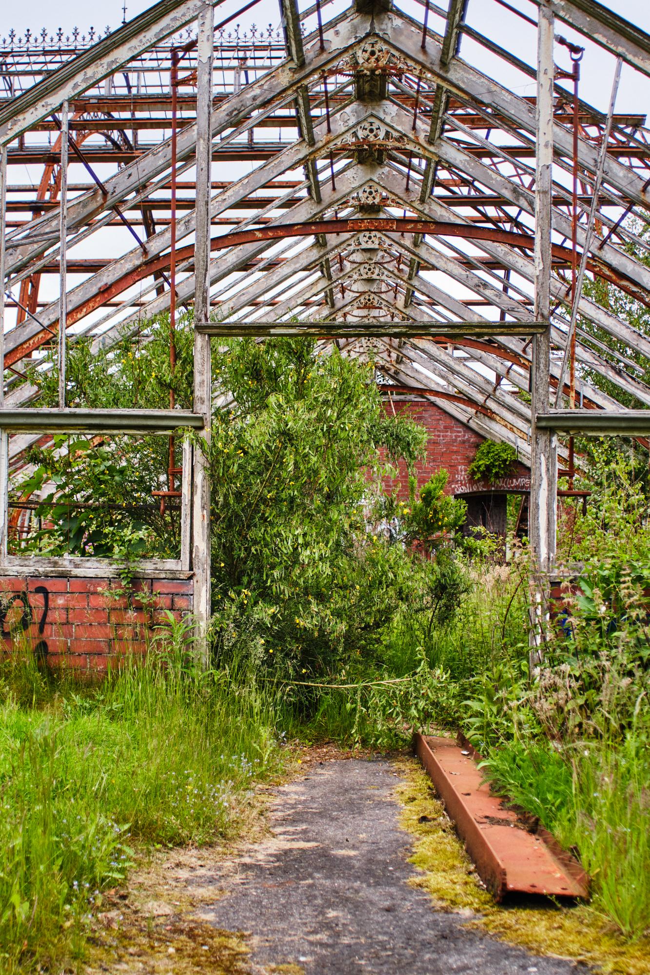 Urbex Glasgow Greenhouse Springburn