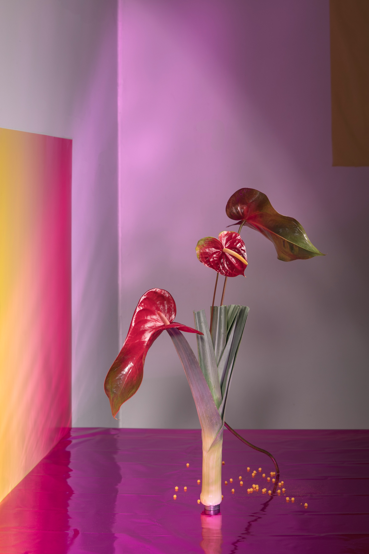 01_new-wave-ikebana_GracexAndria.jpg
