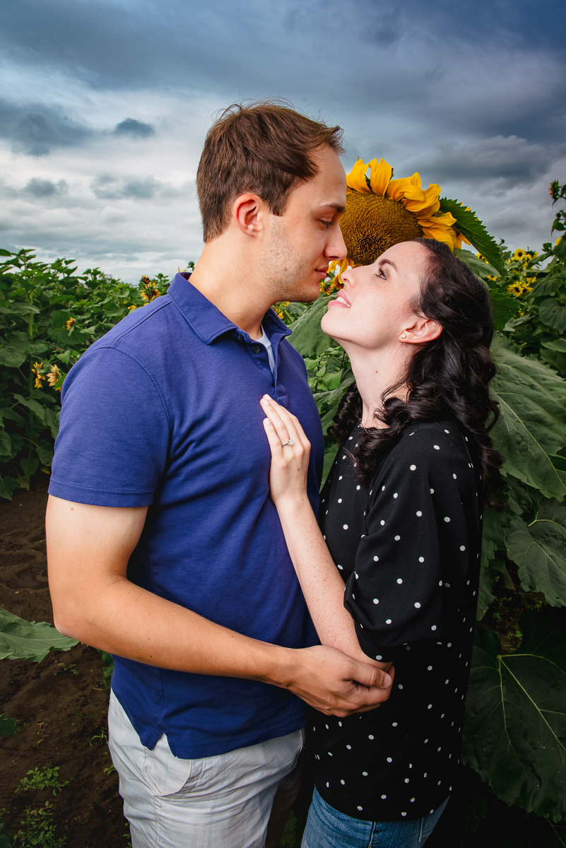 Sunflower farm engagement shoot _ Johnson's Locust Hall Farm _ Jobstown NJ-10.jpg