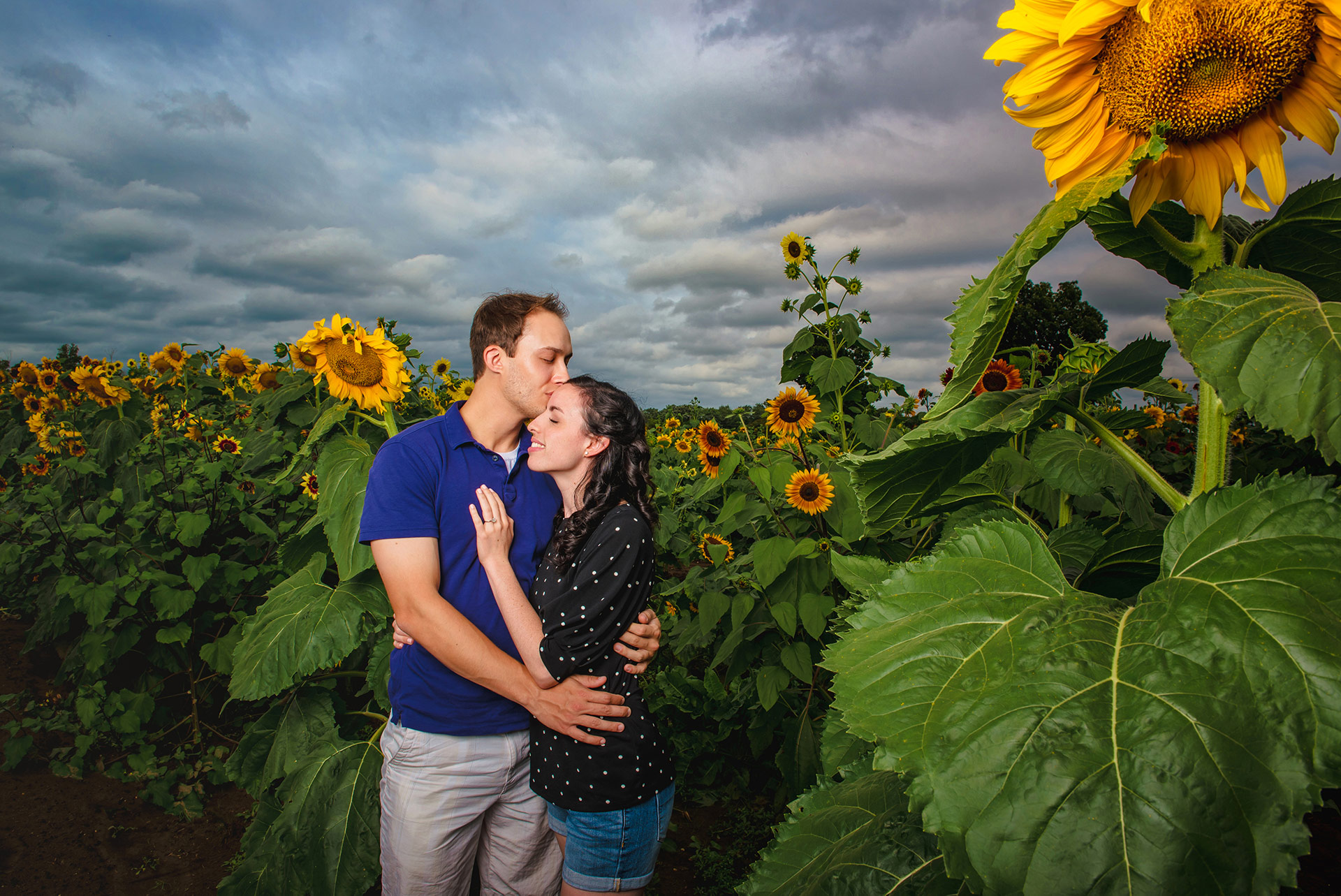 NJ engagement photographer sunflower farm shoot jobstown NJ 342.jpg