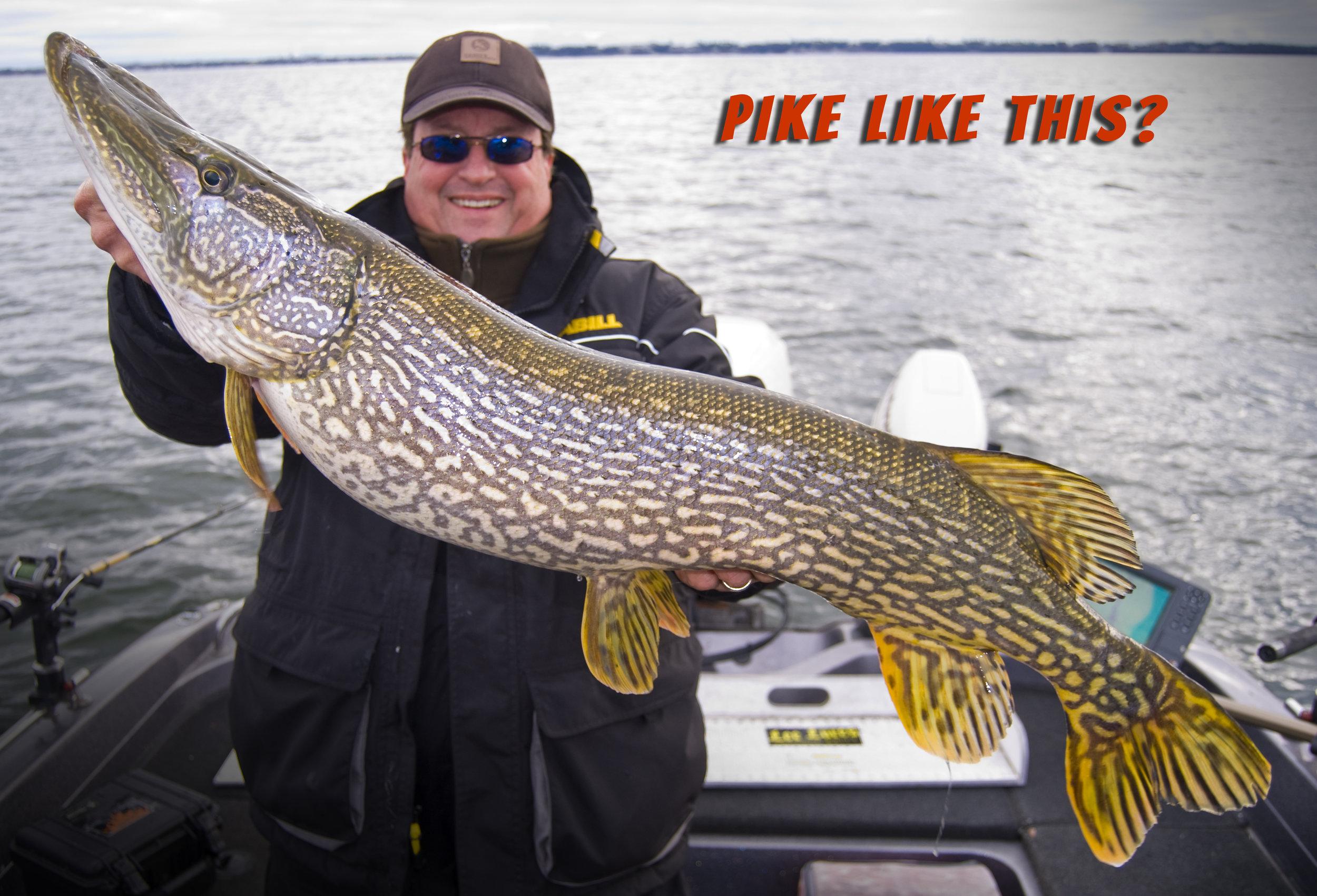 Kevin Pike fb site.jpg