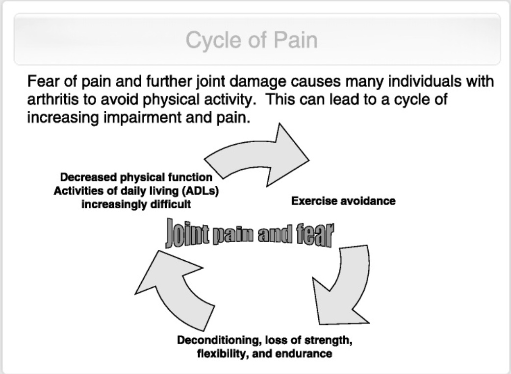 Image of the pain cycle and fear of