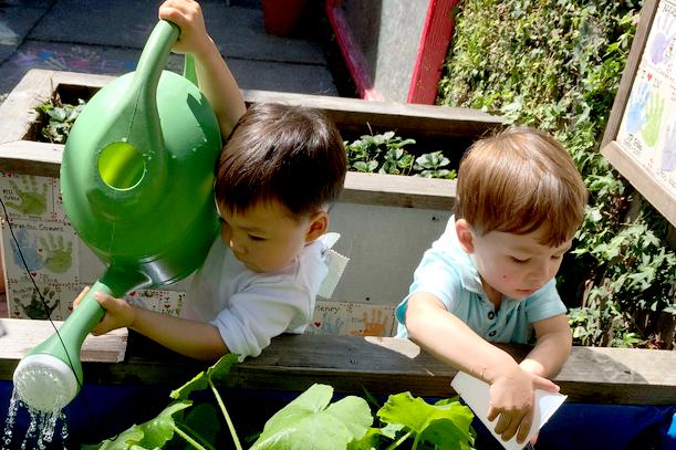 boys-garden2.png