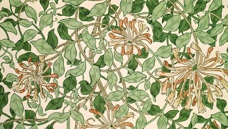 William Morris - Honeysuckle